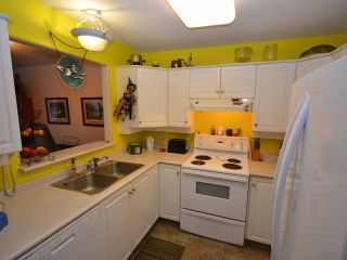 Photo 7: 103 510 LORNE STREET in : South Kamloops Apartment Unit for sale (Kamloops)  : MLS®# 143883