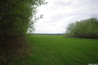Photo 23: Weiss Lakefront Acreage in Big River: Lot/Land for sale : MLS®# SK834150