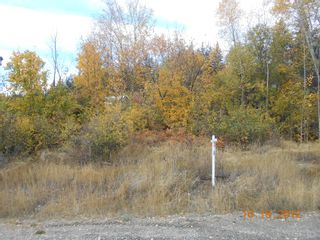 Photo 6: 3 2481 Squilax Anglemont Road in Lee Creek: Land Only for sale : MLS®# 10055686