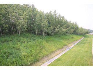 Photo 42: 147 CRAWFORD Drive: Cochrane Condo for sale : MLS®# C4028154