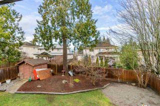 Photo 35: 16237 111A Avenue in Surrey: Fraser Heights House for sale (North Surrey)  : MLS®# R2542134