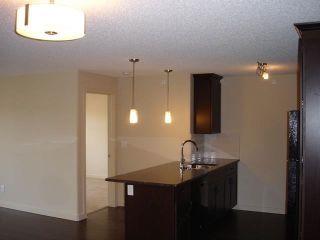 Photo 10: 437 6076 SCHONSEE Way in Edmonton: Zone 28 Condo for sale : MLS®# E4262572