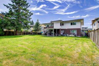 Photo 20: 4140 DALLYN Road in Richmond: East Cambie House for sale : MLS®# R2183400