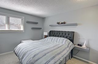 Photo 9: 2735 41A Avenue SE in Calgary: Dover Detached for sale : MLS®# A1082554