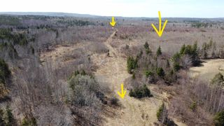 Photo 5: 8532 Trunk 4 Highway in Telford: 108-Rural Pictou County Vacant Land for sale (Northern Region)  : MLS®# 202108300