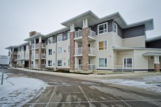 Main Photo: 322 8200 4 Street NE in Calgary: Beddington Heights Apartment for sale : MLS®# A1062656