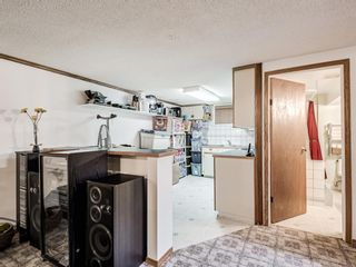 Photo 25: 1116 24 Street NW in Calgary: West Hillhurst Detached for sale : MLS®# A1093237
