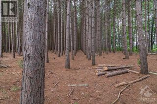 Photo 9: Part 283 ST JOSEPH STREET in Alfred: Vacant Land for sale : MLS®# 1257174