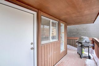 Photo 10: 203 534 20 Avenue SW in Calgary: Cliff Bungalow Apartment for sale : MLS®# A1098206