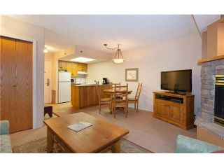 """Photo 3: 318 4809 SPEARHEAD Drive in Whistler: Benchlands Condo for sale in """"THE MARQUISE"""" : MLS®# V1100695"""