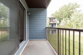 Photo 17: 206 3910 23 Avenue S: Lethbridge Apartment for sale : MLS®# A1142174
