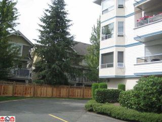 """Photo 10: 204 5377 201A Street in Langley: Langley City Condo for sale in """"RED MAPLE PLACE"""" : MLS®# R2095794"""