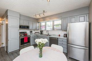 Photo 17: 9132 142 Street in Edmonton: Zone 10 House for sale : MLS®# E4246737