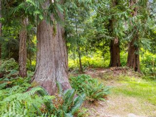 Photo 54: 2038 Pierpont Rd in Coombs: PQ Errington/Coombs/Hilliers House for sale (Parksville/Qualicum)  : MLS®# 881520