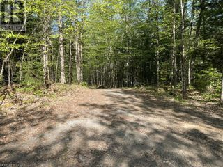 Photo 14: 1372 LAKE LORRAINE Road in Tory Hill: Vacant Land for sale : MLS®# 40052884