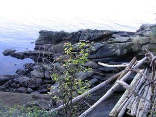 "Photo 9: 16 WISE Island: Galiano Island Land for sale in ""WISE ISLAND"" (Islands-Van. & Gulf)  : MLS®# R2478951"