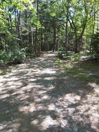 Photo 25: 1380 Canada Hill Road in Canada Hill: 407-Shelburne County Residential for sale (South Shore)  : MLS®# 202112231
