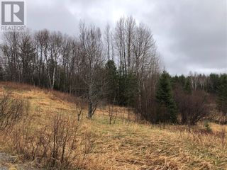 Photo 3: 1252 Dryden Rd E Unit# LOT C in Wahnapitae: Vacant Land for sale : MLS®# 2094568