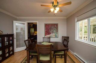 Photo 11: 795 Del Monte Pl in Saanich: SE Cordova Bay House for sale (Saanich East)  : MLS®# 838940