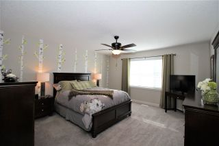 Photo 34: 10 ROBIN Way: St. Albert House Half Duplex for sale : MLS®# E4229220