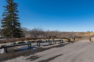 Photo 40: 280 Mountainview Drive: Okotoks Detached for sale : MLS®# A1080770