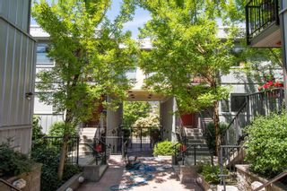 """Photo 1: 202 668 W 6TH Avenue in Vancouver: Fairview VW Townhouse for sale in """"The Bohemia"""" (Vancouver West)  : MLS®# R2596891"""