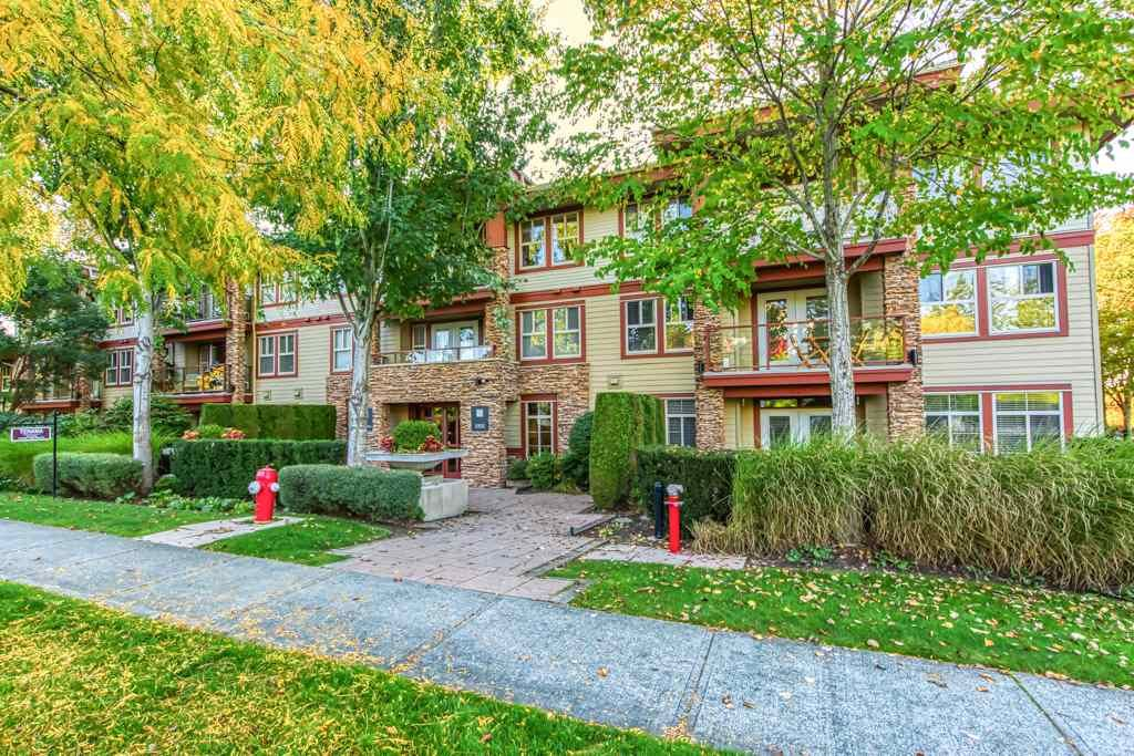 """Main Photo: 311 3355 ROSEMARY HEIGHTS Drive in Surrey: Morgan Creek Condo for sale in """"Tehama"""" (South Surrey White Rock)  : MLS®# R2505835"""