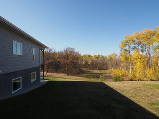 Photo 44: 56083 37N Road in Treherne: House for sale : MLS®# 202025650
