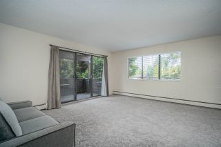 """Photo 23: 218 12170 222 Street in Maple Ridge: West Central Condo for sale in """"WILDWOOD TERRACE"""" : MLS®# R2497628"""