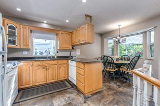 Photo 15: 22970 126 Avenue in Maple Ridge: East Central House for sale : MLS®# R2604751