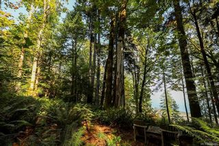 Photo 14: Lot 2 Eagles Dr in : CV Courtenay North Land for sale (Comox Valley)  : MLS®# 869395