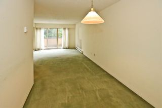 """Photo 7: 204 1260 W 10TH Avenue in Vancouver: Fairview VW Condo for sale in """"LABELLE COURT"""" (Vancouver West)  : MLS®# R2615992"""