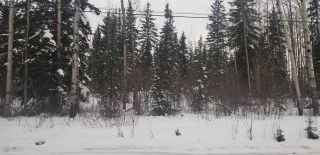 Photo 5: LOT 2 S MCBRIDE TIMBER Road in Prince George: Upper Mud Land for sale (PG Rural West (Zone 77))  : MLS®# R2543587