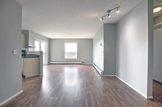 Photo 22: 6413 304 Mackenzie Way SW: Airdrie Apartment for sale : MLS®# A1128019