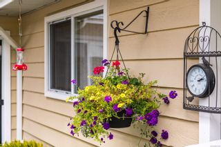 Photo 22: 1143 Nicholson St in Saanich: SE Lake Hill House for sale (Saanich East)  : MLS®# 850708