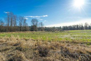 Photo 30: LT.2 232 STREET in Langley: Salmon River Land for sale : MLS®# R2532238