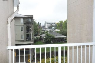 "Photo 13: 401 22351 ST ANNE Avenue in Maple Ridge: West Central Condo for sale in ""PORT HANEY"" : MLS®# R2213208"