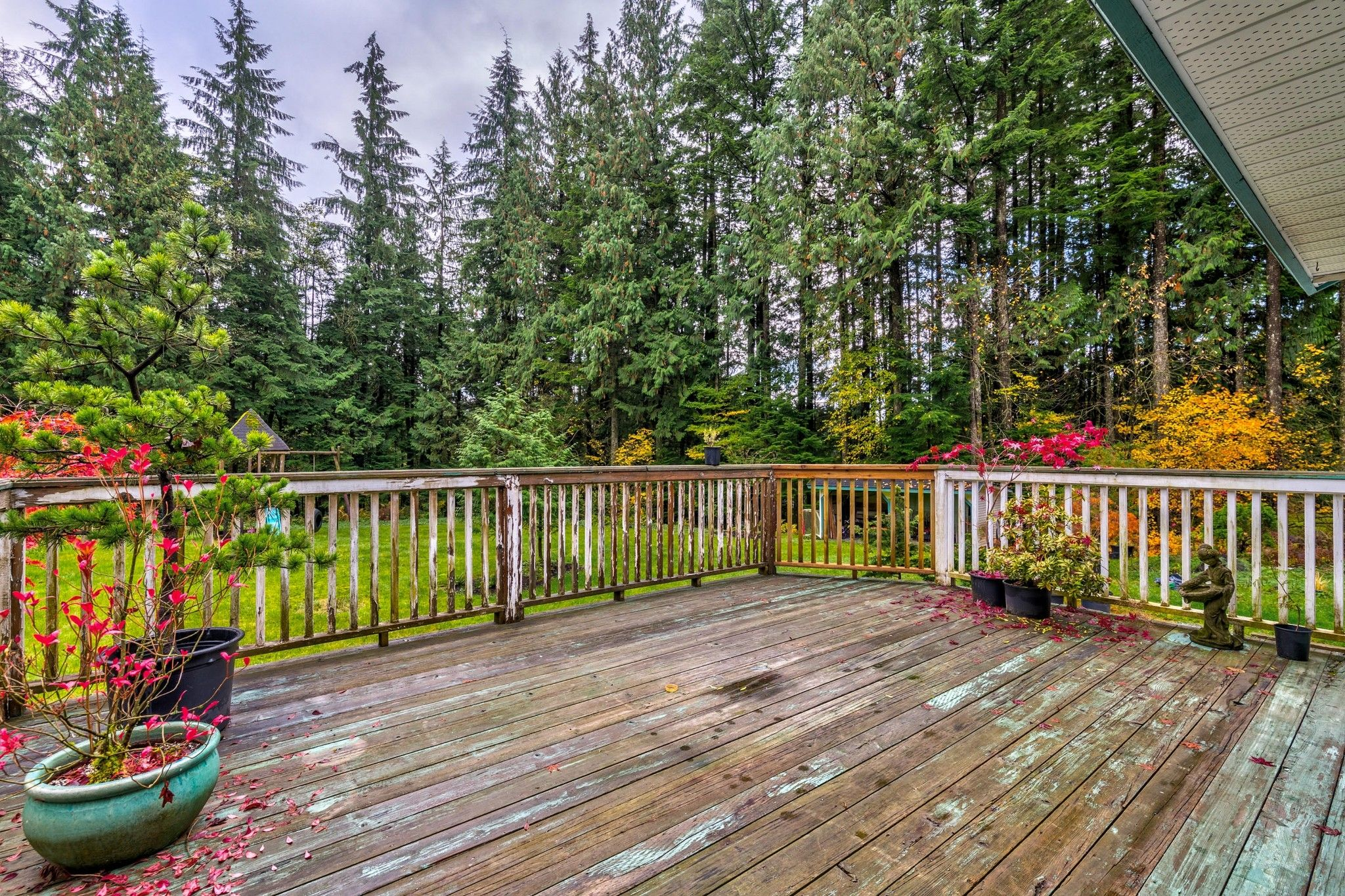 Photo 21: Photos: 27830 Laurel Place in Maple Ridge: Northeast House for sale : MLS®# R2415483