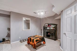 Photo 30: 239 Evermeadow Avenue SW in Calgary: Evergreen Detached for sale : MLS®# A1062008