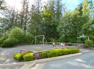 Photo 38: 17-11384 Burnett Street in Maple Ridge: East Central Townhouse for sale : MLS®# R2589737