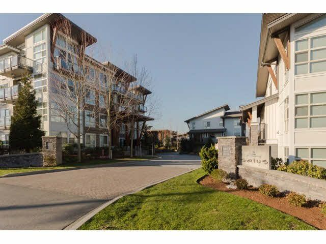 """Main Photo: 117 6628 120TH Street in Surrey: West Newton Condo for sale in """"THE SALUS"""" : MLS®# F1431111"""