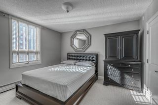 Photo 10: 301 733 14 Avenue SW in Calgary: Beltline Apartment for sale : MLS®# A1072103