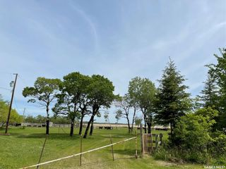 Photo 19: Abbott Acreage in Duck Lake: Residential for sale (Duck Lake Rm No. 463)  : MLS®# SK856969
