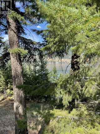 Photo 4: 1803 SOUTH LAKESIDE DRIVE in Williams Lake: Vacant Land for sale : MLS®# R2612495