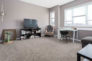 Photo 21: 3 RIVIERE Terrace: St. Albert House for sale : MLS®# E4241727