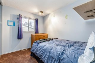 Photo 14: 260 Van Horne Crescent NE in Calgary: Vista Heights Detached for sale : MLS®# A1047650