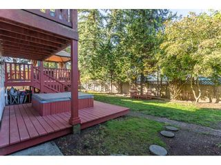 Photo 16: 11851 98A Avenue in Surrey: Royal Heights House for sale (North Surrey)  : MLS®# R2313177