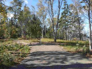 Photo 18: LOTS Sand Bank Road in Victoria Vale: 400-Annapolis County Vacant Land for sale (Annapolis Valley)  : MLS®# 202103631
