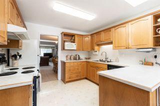 Photo 10: 6681 SPERLING Avenue in Burnaby: Upper Deer Lake 1/2 Duplex for sale (Burnaby South)  : MLS®# R2391156