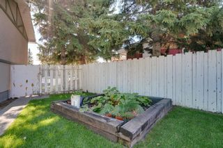 Photo 28: 5407 LADBROOKE Drive SW in Calgary: Lakeview Detached for sale : MLS®# A1009726
